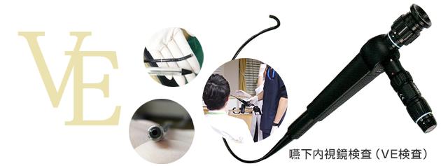 嚥下内視鏡検査(VE)